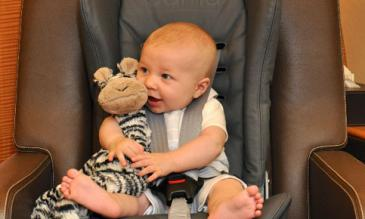 child safety restraint systems (crs)